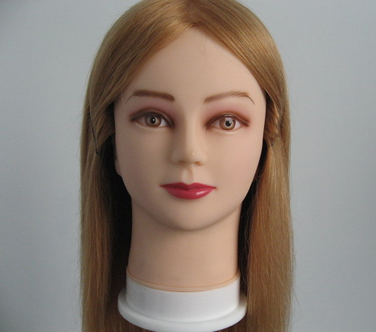 Mannequin Head and Lesson Wig